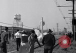 Image of Cannery workers Stockton California USA, 1937, second 39 stock footage video 65675041426