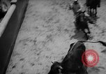 Image of Charros Mexico, 1961, second 20 stock footage video 65675041462