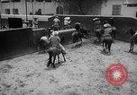 Image of Charros Mexico, 1961, second 24 stock footage video 65675041462
