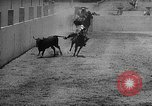 Image of Charros Mexico, 1961, second 27 stock footage video 65675041462