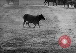 Image of Charros Mexico, 1961, second 33 stock footage video 65675041462