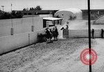 Image of Charros Mexico, 1961, second 48 stock footage video 65675041462