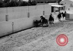 Image of Charros Mexico, 1961, second 49 stock footage video 65675041462
