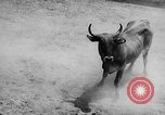 Image of Charros Mexico, 1961, second 56 stock footage video 65675041462