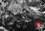 Image of Buna campaign New Guinea, 1943, second 24 stock footage video 65675041520