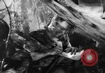 Image of Buna campaign New Guinea, 1943, second 31 stock footage video 65675041520