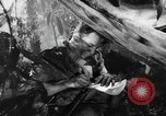 Image of Buna campaign New Guinea, 1943, second 35 stock footage video 65675041520