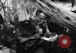 Image of Buna campaign New Guinea, 1943, second 37 stock footage video 65675041520