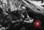 Image of Buna campaign New Guinea, 1943, second 40 stock footage video 65675041520