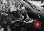 Image of Buna campaign New Guinea, 1943, second 43 stock footage video 65675041520