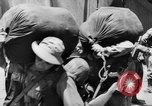 Image of Buna campaign New Guinea, 1943, second 56 stock footage video 65675041520