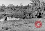 Image of Buna campaign New Guinea, 1943, second 61 stock footage video 65675041520
