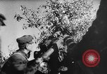 Image of attack on Leningrad Russia, 1941, second 47 stock footage video 65675041526