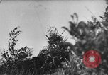 Image of attack on Leningrad Russia, 1941, second 48 stock footage video 65675041526