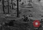 Image of Troops of US 16th Infantry Regiment advance toward St. Andreasberg Germany, 1945, second 31 stock footage video 65675041534