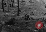 Image of Troops of US 16th Infantry Regiment advance toward St. Andreasberg Germany, 1945, second 32 stock footage video 65675041534