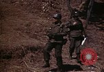 Image of Military Police Korea, 1951, second 24 stock footage video 65675041574