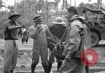 Image of United States Marines Tacloban City Leyte Island Philippines, 1945, second 48 stock footage video 65675041588