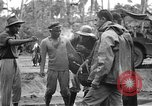 Image of United States Marines Tacloban City Leyte Island Philippines, 1945, second 49 stock footage video 65675041588