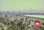 Image of United States troops Inchon Incheon South Korea, 1950, second 38 stock footage video 65675041601