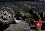 Image of United States Marines Naktong River Korea, 1950, second 9 stock footage video 65675041606