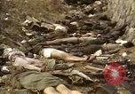 Image of Victims of Hoengsong Massacre in Korean War Hoengsong Korea, 1951, second 29 stock footage video 65675041619