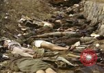 Image of Victims of Hoengsong Massacre in Korean War Hoengsong Korea, 1951, second 34 stock footage video 65675041619
