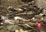 Image of Victims of Hoengsong Massacre in Korean War Hoengsong Korea, 1951, second 35 stock footage video 65675041619