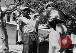 Image of Sultan Morocco North Africa, 1953, second 26 stock footage video 65675041645