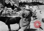 Image of Sultan Morocco North Africa, 1953, second 37 stock footage video 65675041645