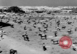 Image of Sultan Morocco North Africa, 1953, second 39 stock footage video 65675041645