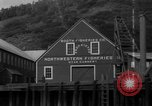Image of Booth Fishery Company Alaska USA, 1932, second 31 stock footage video 65675041673