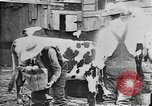 Image of mining town in United States early 1900s United States USA, 1915, second 11 stock footage video 65675041755