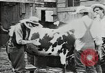 Image of mining town in United States early 1900s United States USA, 1915, second 13 stock footage video 65675041755