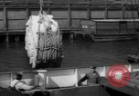 Image of freighter Leopold Staten Island New York USA, 1941, second 47 stock footage video 65675041790