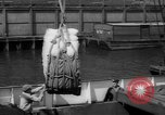 Image of freighter Leopold Staten Island New York USA, 1941, second 49 stock footage video 65675041790