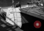 Image of freighter Leopold Staten Island New York USA, 1941, second 56 stock footage video 65675041790