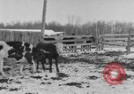 Image of Farm of Crow Native American Indian tribe Montana United States USA, 1921, second 18 stock footage video 65675041807