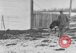 Image of Farm of Crow Native American Indian tribe Montana United States USA, 1921, second 47 stock footage video 65675041807