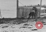 Image of Farm of Crow Native American Indian tribe Montana United States USA, 1921, second 53 stock footage video 65675041807