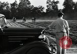 Image of Negro workers North Carolina United States USA, 1934, second 10 stock footage video 65675041858