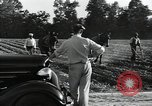 Image of Negro workers North Carolina United States USA, 1934, second 45 stock footage video 65675041858