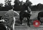 Image of Negro workers North Carolina United States USA, 1934, second 51 stock footage video 65675041858