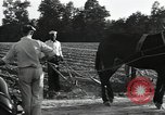 Image of Negro workers North Carolina United States USA, 1934, second 54 stock footage video 65675041858