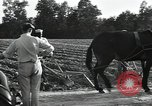 Image of Negro workers North Carolina United States USA, 1934, second 56 stock footage video 65675041858