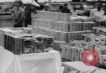 Image of Edward Kennedy South Vietnam, 1965, second 44 stock footage video 65675041873