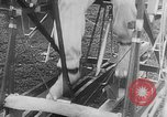Image of human powered airplane United States USA, 1920, second 20 stock footage video 65675042058
