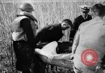 Image of injured men Nanking China, 1937, second 1 stock footage video 65675042123