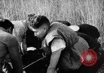 Image of injured men Nanking China, 1937, second 4 stock footage video 65675042123