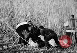 Image of injured men Nanking China, 1937, second 8 stock footage video 65675042123
